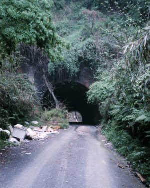 写真:畑トンネル青梅側坑口