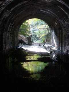 写真:東側坑口方向を中から撮影。水たまりは靴が水没するほど深いらしいです