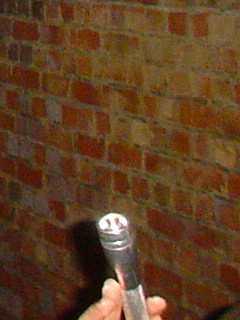 写真:中程の煉瓦は結構綺麗。おや、友人の手が写っちゃいました(^^;