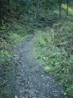 写真:西側坑口へ続く旧道
