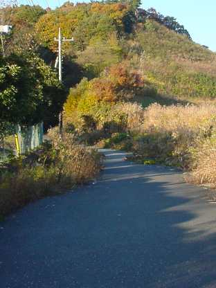 写真:飯能側坑口へ続く道(1)