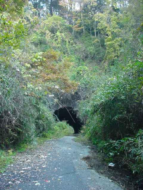 写真:青梅側坑口遠景(2001年撮影)