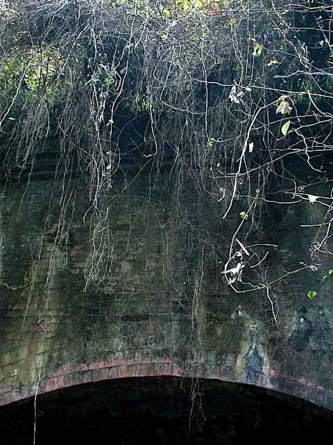 写真:青梅側坑口上部